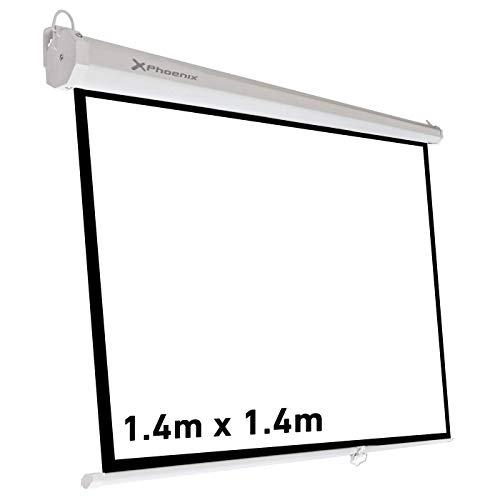1:1 celexon 200 x 200 cm Pantalla motorizada para cine en casa y presentaciones b/ásica con un factor de ganancia 1,2