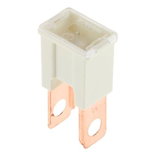 perfk Mini Fuse Fusible Plug-in Cuchilla Accesorio para Coches Carro Automóviles - 120A Blanco