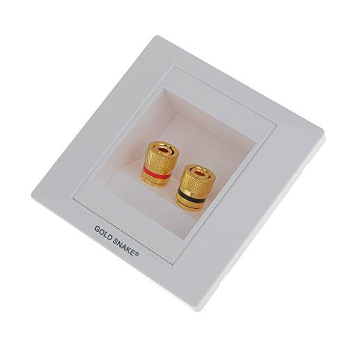 Sharplace 2 Buchsen Lautsprecherdose Wandsteckdose Lautsprecher Anschluss - Weiß