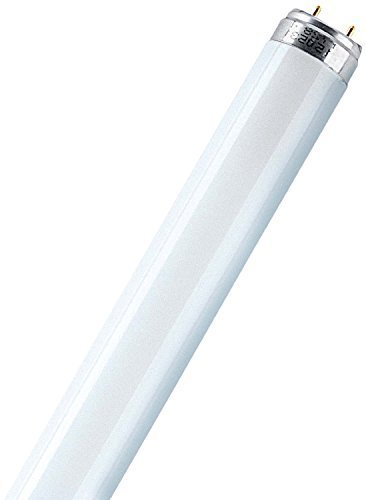 4x-protecclass-lampe-0540032-plsl-18w-t8-g13-840-cool-white-weiss-leuchtstoffrhre-590mm-26mm-leuchts