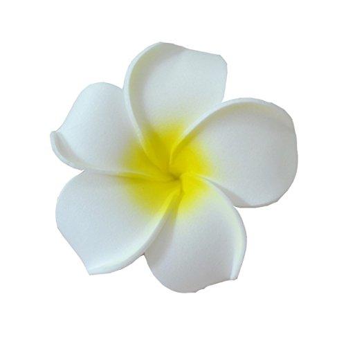 eqlefr-5-pezzi-clip-hawaiana-fiori-sposa-capelli-barrette-tropical-beach-wedding-plumeria-partito-de