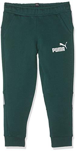 Puma Jungen Amplified Sweat Pants B Jogginghose, Ponderosa Pine, 140