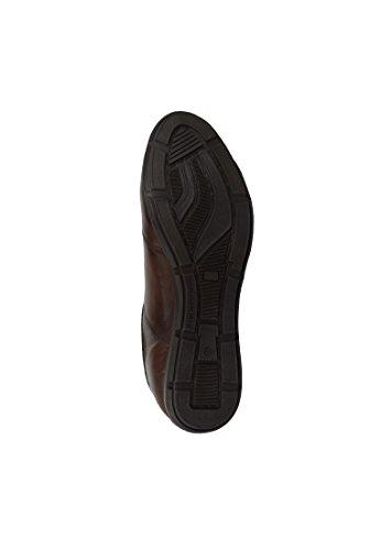 Levis Paniers Chaussures Turlock Régulière Noir 221750-762 Dark Brown