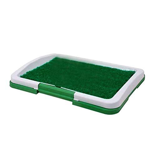 Jayson White Head Haustier-WC-Matte für Hunde, Katzen, Welpen, Töpfchen für drinnen und draußen, zum Trainieren von Gras, Pee Pad