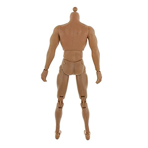 Sharplace 1/6 Male 12'' Action Figure Arms Muscular Body Model Toys with Accessories For Hot Toys