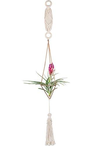 Mkouo Makramee Hängepflanze Air Halterung Himmeli Set für Tillandsien Airplants Metall Geometrische Decor (mit Kette), 27cm