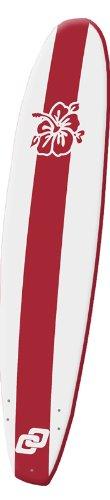 SOFT BOARD  ONDA JINETE PARA PRINCIPIANTES 9 0(SURF)