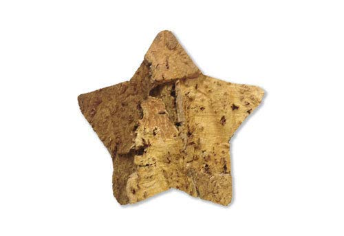 PLAT FIRM Fairm Keimkörner: Cork Bark, rustikal, spezielle Formen von Lokus - Star 5 1/2 - 8 Zoll -