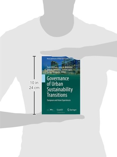 Governance of Urban Sustainability Transitions (Theory and Practice of Urban Sustainability Transitions)