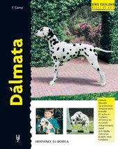 Dalmata (Excellence) por F. Camp