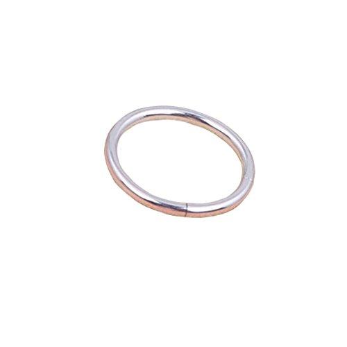 Republe Cartilage Piercing Ring Scharnier Band-Ohrring-Nasen-Ring Lippenring-Edelstahl-Ring Dangler Earbob