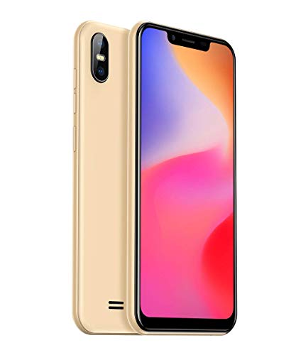 Ulefone S10 Pro Dual SIM 4G Smartphone ohne Vertrag (5,7 Zoll 3 Kartenfächer, 2GB RAM 16 GB Speicher, 16MP+8MP Dual Kamera, OTG Fingerabdruck Face Unlock, Dual SIM Android 8.1 Handy) Gold