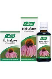 A Vogel Echinaforce 120 Tablets by A. Vogel (Bioforce)