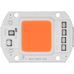 AC 220 V Vollspektrum Indoor Pflanzenwachstum Lampe COB LED Wachsen Licht Chip (50 Watt)