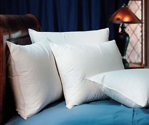 pacific-coast-double-down-surround-pillows-4-king-bonus-of-2-king-pillows-featured-in-many-ritz-carl