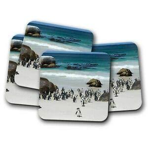 Worlddream Untersetzer, Motiv: Boulders Penguin Colony, 4 Stück -