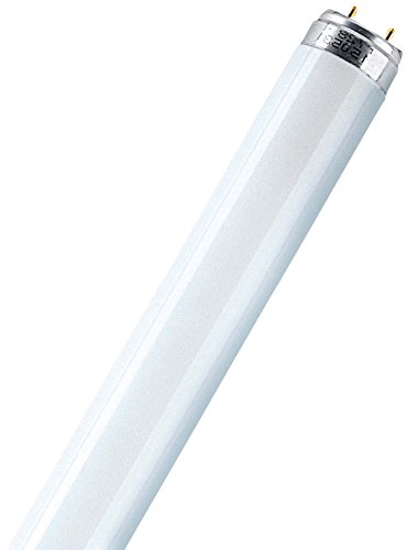 Leuchtstofflampe L 30 Watt 865 Tageslicht - Osram 30W