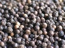 Black Peppercorns - Grade A Premium Quality by FGS Ingredients Ltd