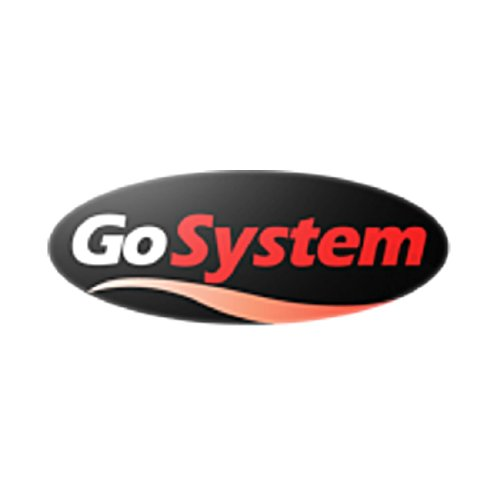 GoSystem Butane Propane Threaded Mix Gas Cartridge – Silver, 445 gram
