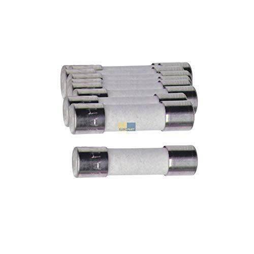 LUTH Premium Profi Parts Keramik-Sicherung 8A, 10 Stück (Mikrowelle Sicherung)