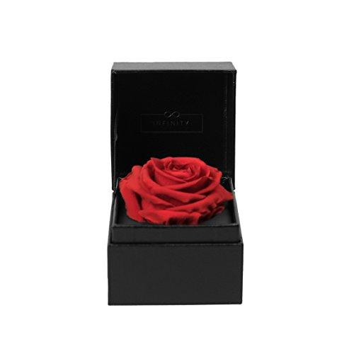 Infinity flower box single box vibrant red articoli da regalo, cartone, rosso, 10x 10x 10cm
