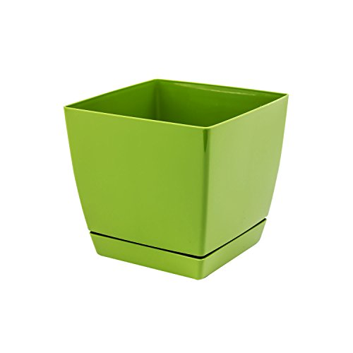 Pot de fleur vert carré 13 cm plastique Coubi,soucoupe amovilbe