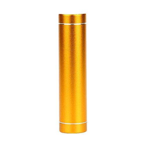 Bescita 3000mAh Tragbare Externe USB Power Bank Box Akku Ladegerät für Handy (Gold) Sony Digital Pda