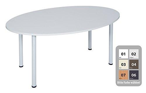 Dila GmbH Besprechungstisch Schreibtisch Konferenztisch Oval Tisch Büromöbel Schreibtische (Lichtgrau, 160 x 100)