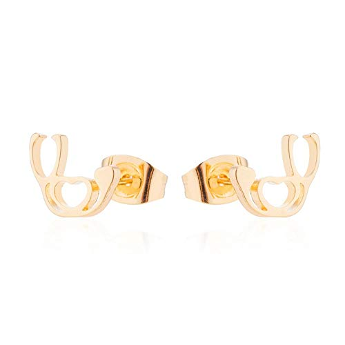 GDSGDSEH Ohrringe Stethoskop Ohrringe Für Frauen Schmuck Krankenschwester Doktor Stethoskop Form Ohrstecker