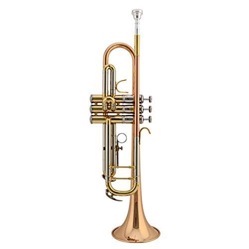 LVSSY-Eleganter Standard B Trompeten Anfänger Mit Komplettem Zubehör Hartschalenkoffer Handschuhen 7C Mundstück