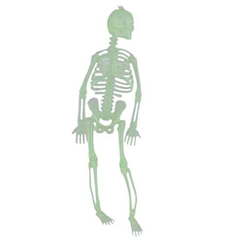 happy event Halloween Leuchtend Totenkopf Skelett Körper Gruseliges Spielzeug Spukhaus Tricky Prop | Luminous Skull Skeleton Body Scary Halloween Toy Haunted House Tricky Prop