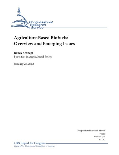 agriculture-based-biofuels-overview-and-emerging-issues-english-edition