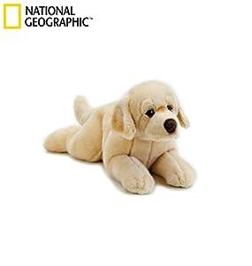 Venturelli 742165 Peluche Perro Labrador Horace 40 cm