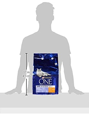 Purina ONE Adult Complete Cat Food