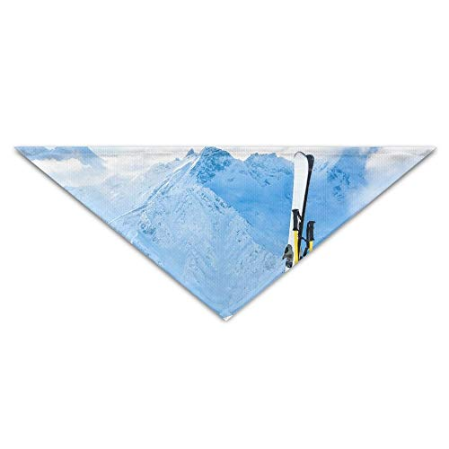 Top Ski Resort In The French Alps Turban Triangle Scarf Bib Scarf Accessories Pet Cat and Baby Puppy Saliva Dog Towel