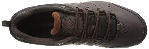 Columbia Woodburn II Waterproof, Chaussures de randonnée basses homme Cordovan, Cinnamon