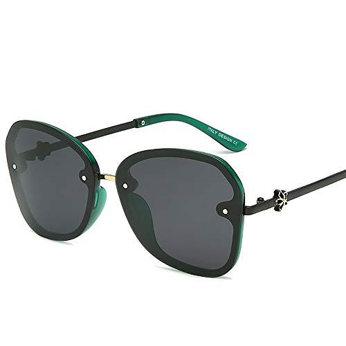 NQN Premium Ultra Sleek, Sport-Pilotenbrille, polarisiert, 100% UV-Schutz, großer Rahmen für Männer und Frauen,C5 (Sport-programm Frames)