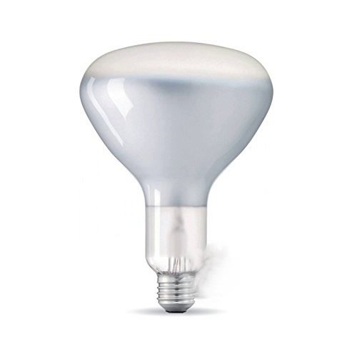 ECO R125 FILOLIERT DIMMERABLE 7W 2700K WARM LICHT GROSSE PREISE E27 21392 Beam Diffusor