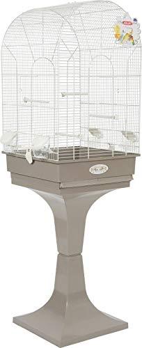 cage oiseau pied
