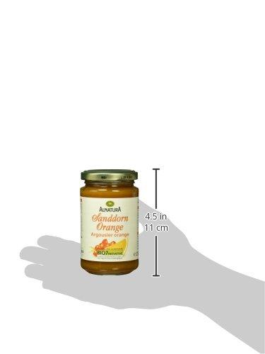 Alnatura Bio Fruchtaufstrich Sanddorn-Orange, vegan, 6er Pack (6 x 250 g) - 6