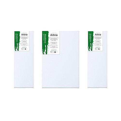 Artina Set de Lienzos - Tríptico de bastidores - 120 x 80 cm - 100% algodón - 280g/m² - de Calidad Akademie