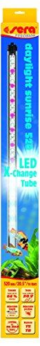 sera 31255 LED daylight sunrise 520 - Farbechtes und natürliches Tageslicht (6.000 - 8.000 Preisvergleich
