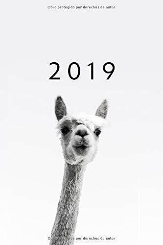 2019: ENE - DIC Agenda Semanal | 152 x 229 mm | 1 Semana en 2 Páginas | 52 Semanas Planificador y Calendario | Alpaca