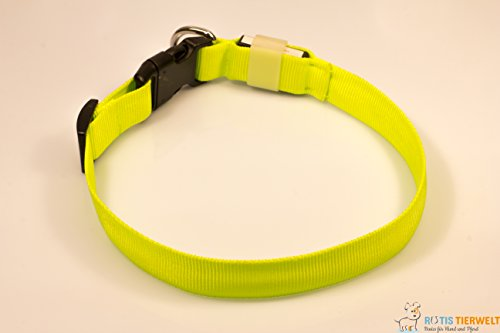 LED Leuchthalsband Basic 1 per USB aufladbar, Größe L, Grün - 5