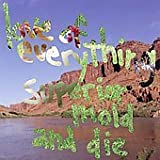 Songtexte von The Love of Everything - Superior Mold and Die