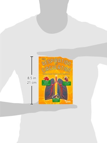 Your Respiration and Circulation: Understand it with Numbers (Your Body By Numbers)