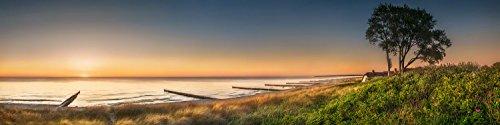 75 Fine Art Prints (Panorama Wandbild auf Alu-Dibond. Ostsee bei Ahrenshoop. Galerie Fine Art Print auf Aludibond. Panoramabild als Kunst Wanddeko Wand Foto Bild)