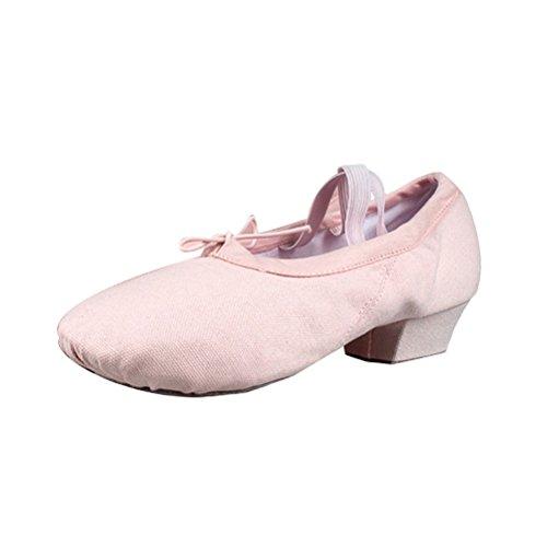 Mulheres Zhhlinyuan Moda Lona Ballet Sapatos De Dança Prática Adulto 3 Cores Nu