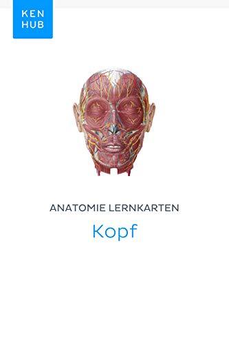 Anatomie Lernkarten: Kopf: Lerne alle Organe, Muskeln, Arterien ...