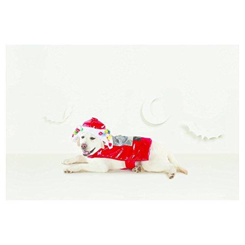 Kostüm Gumball - Hyde & Eek Boutique Hundekostüm mit Stiefeln und Barkley, Kaugummi, Größe M, 2-teilig